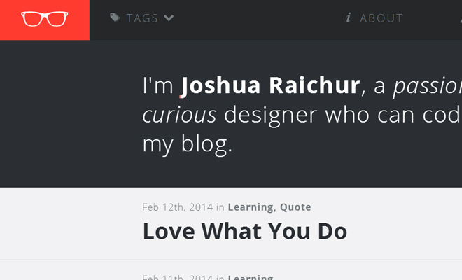 joshua raichur website portfolio layout