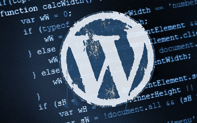 wordpress themes code a settings page gui
