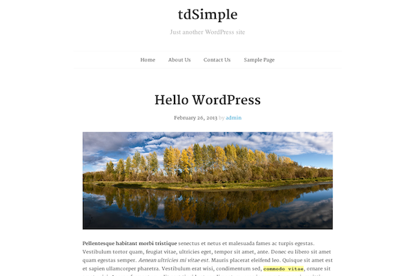 extend wordpress themes tdsimple