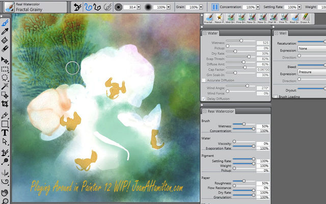 corel painter x3 software program desktop