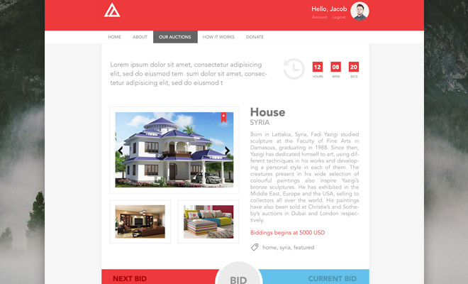 auction page website freebie psd