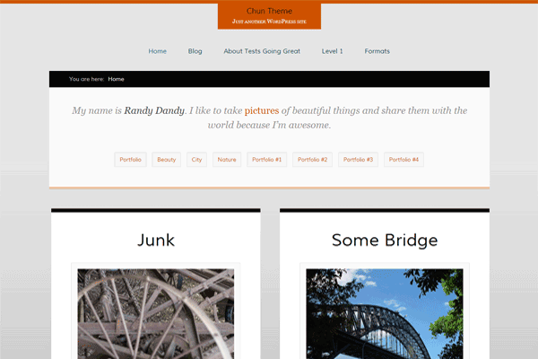 chun wordpress theme design freebie