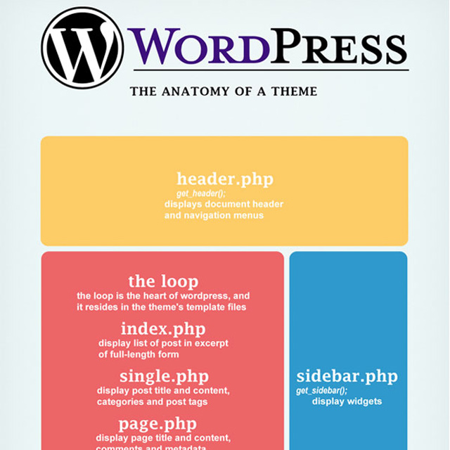 anatomy of a wordpress theme infographic design