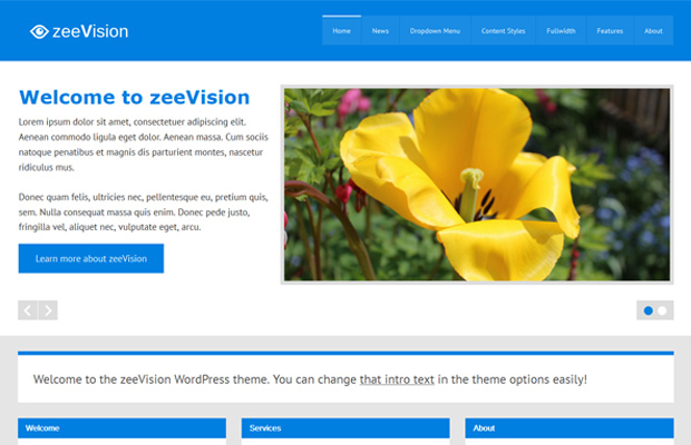 zeevision wordpress theme blue colors open source