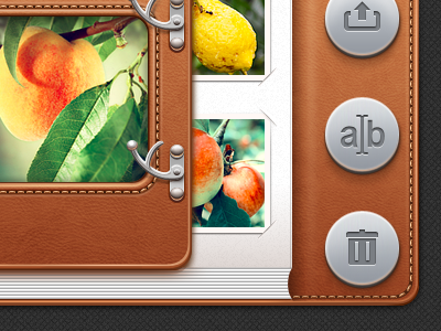 iPad App UI design for Photo Album