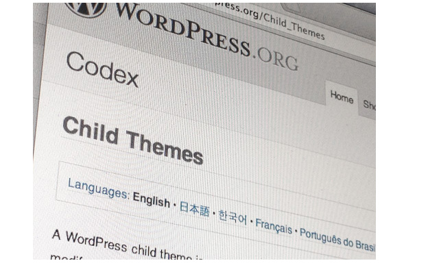guide to wordpress child theme development