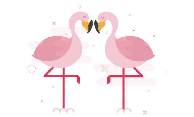 pink flamingos love wedding valentine
