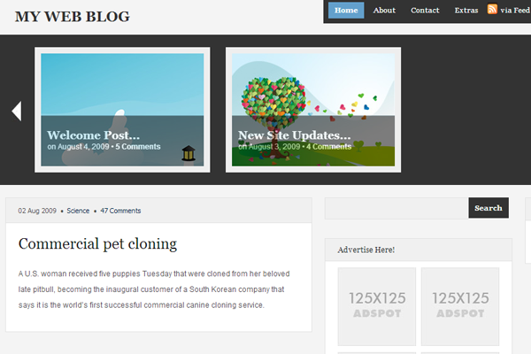 Free WordPress Theme MagazineShack download