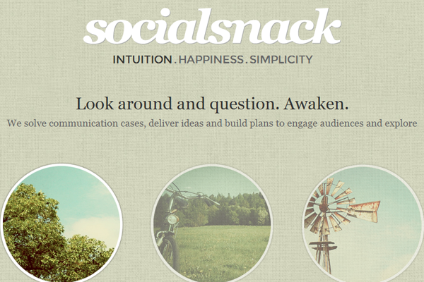 Social Snack website portfolio design