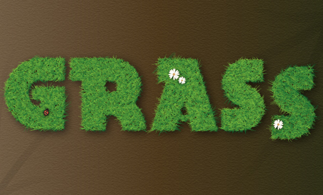illustrator tutorial vector grass text