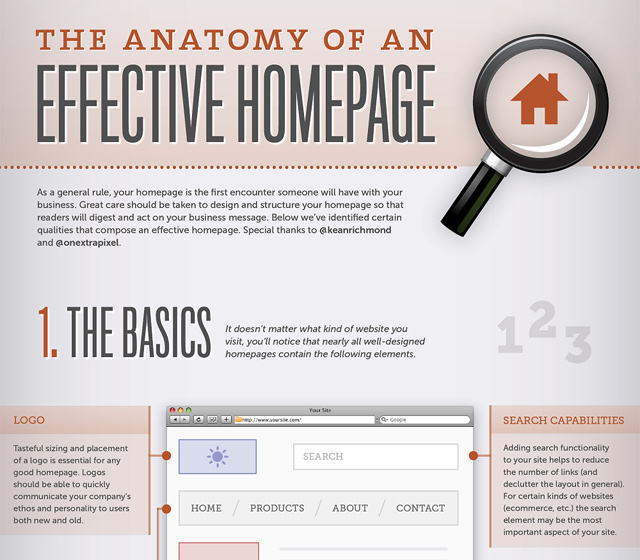 anatomy of effective homepage infographic design