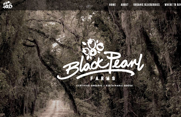 black pearl farms fullscreen homepage