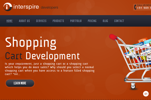 Interspire e-commerce website CMS developers orange layout