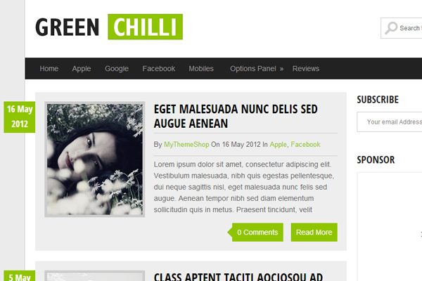 GreenChili Website WordPress Freebie Theme template