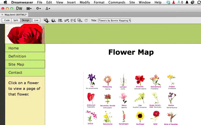 adobe help tutorial dreamweaver cs6 image map