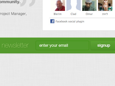Green Website ui newsletter signup form