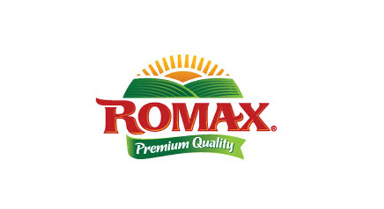romax clean bright logo design inspiration