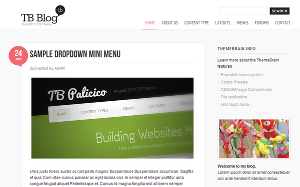 TB Blog website content management system theme template
