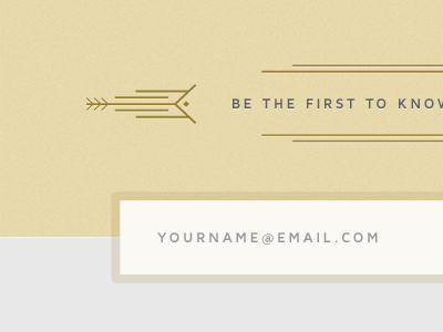 Grey Tan minimalist website signup form interface