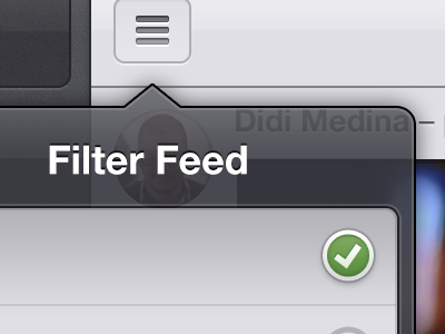 iPad Retina display screen popover