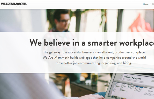 we are mammoth consulting white simple website layout