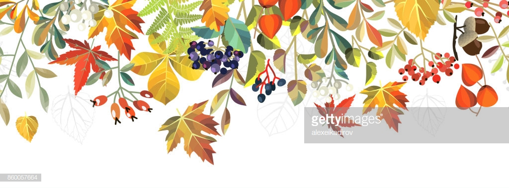 autumn background with flowers