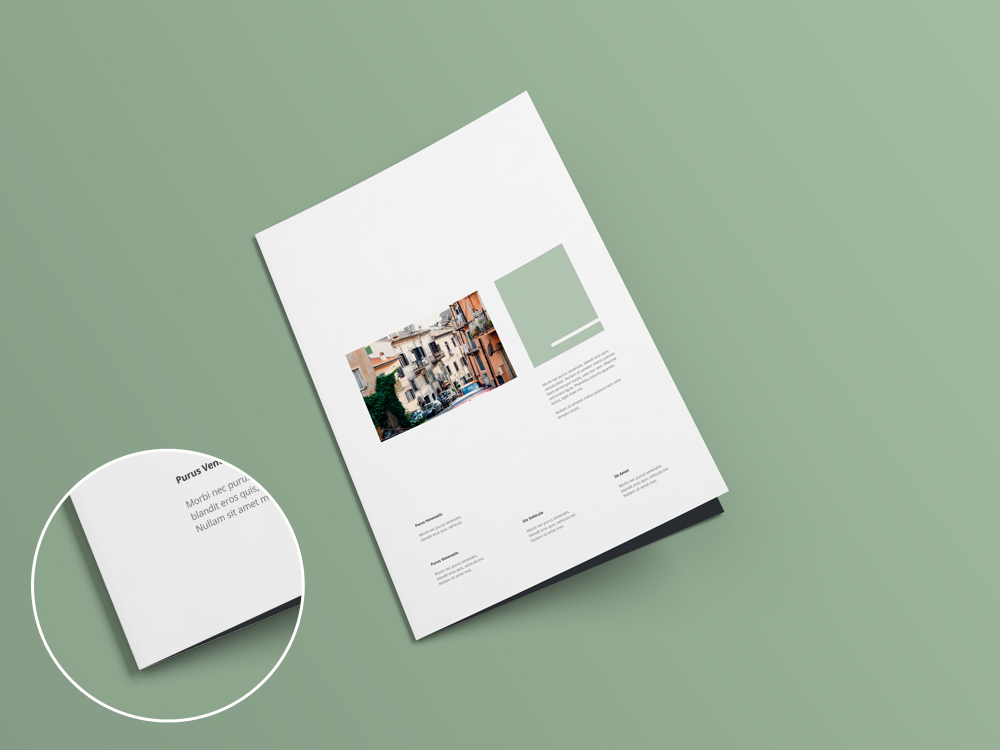 Bi Fold Brochure And Flyer Mockup