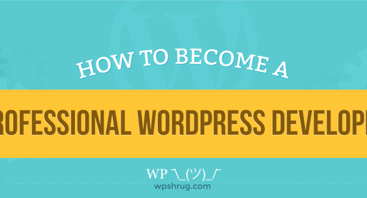 How to Become a Professional WordPress Developer [Infographic]