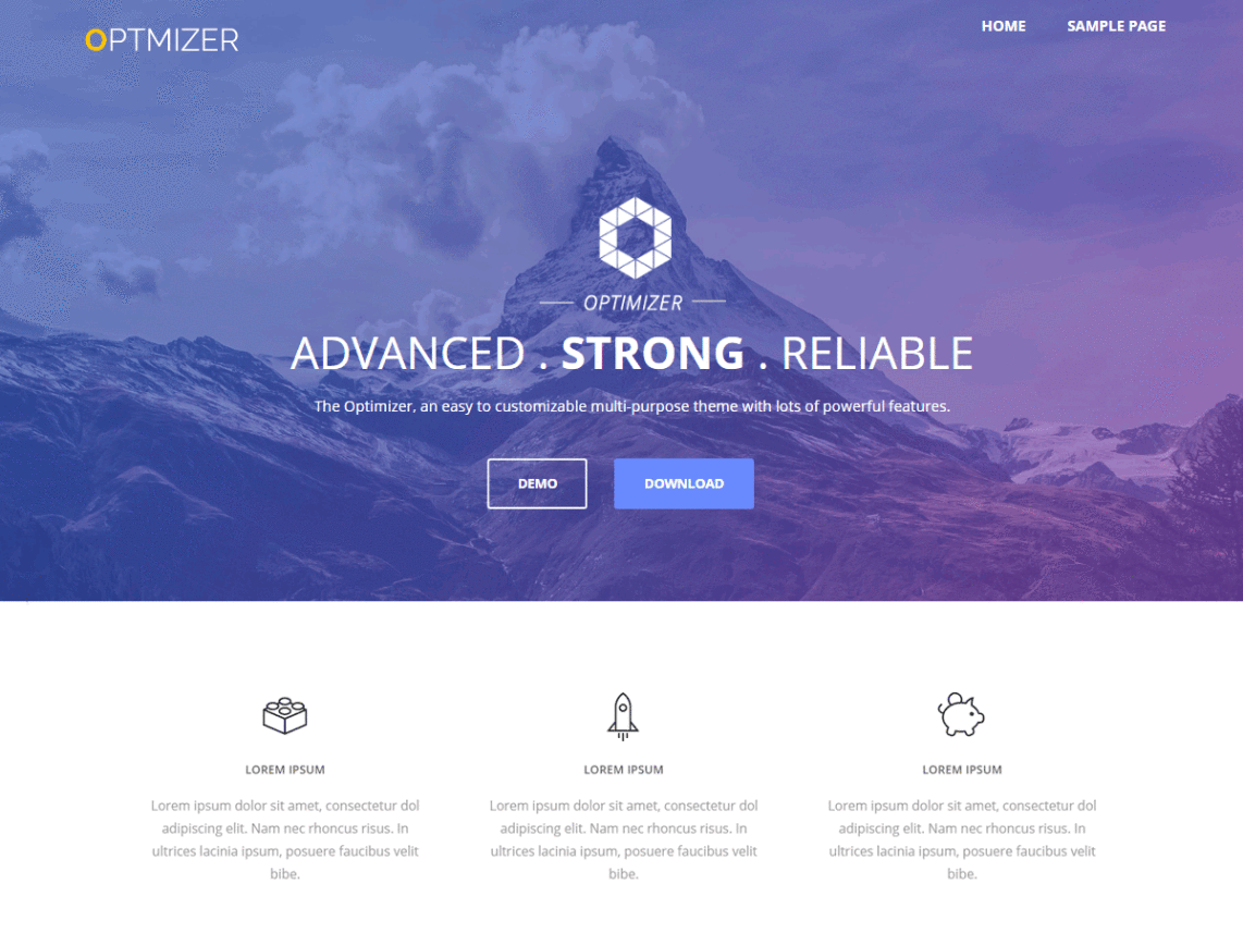 Optimizer theme