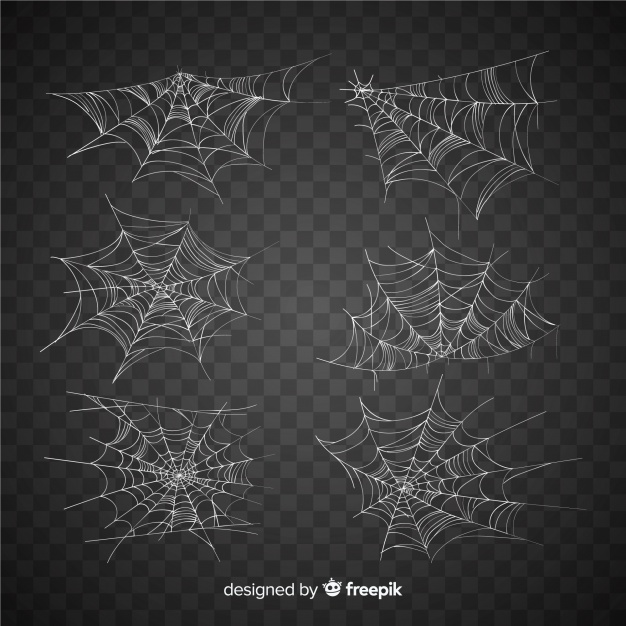collection of halloween cobweb vector images