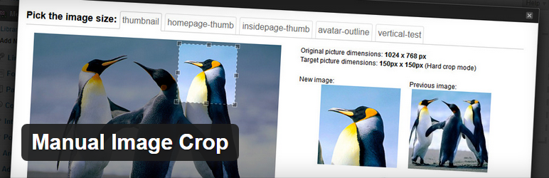 Manual Image Crop - Essential WordPress Plugins to Make the Designer's Life Easier