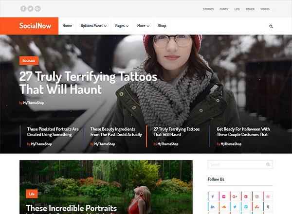wordpress themes seo