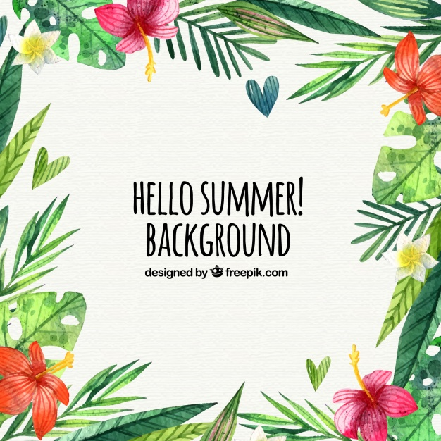 summer website themes background